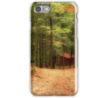 Autumn path II iPhone Case/Skin