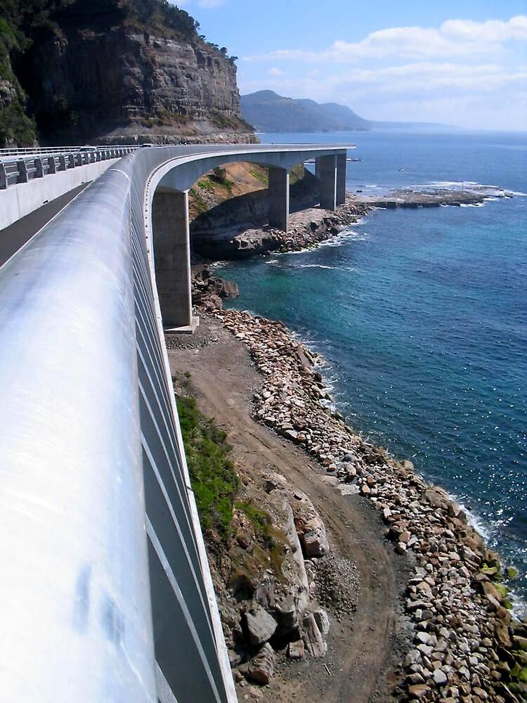 Sea Cliff Bridge, NSW  by Patricia  Knowles