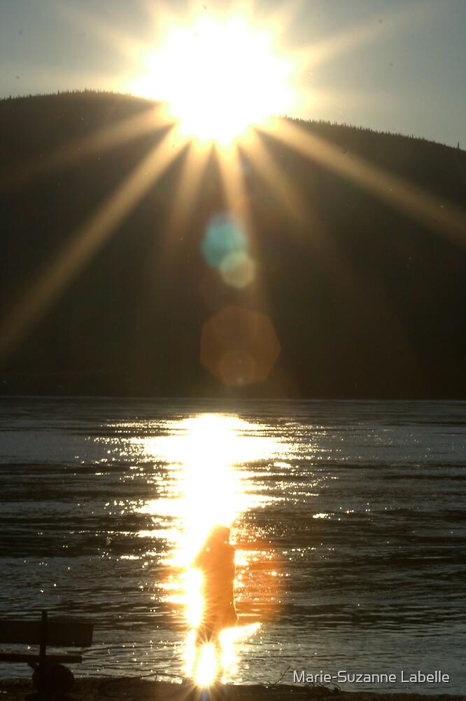 Midnight-Sun Light-Bath by Crokuslabel