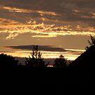 Golden Sunset... by John Gilluley