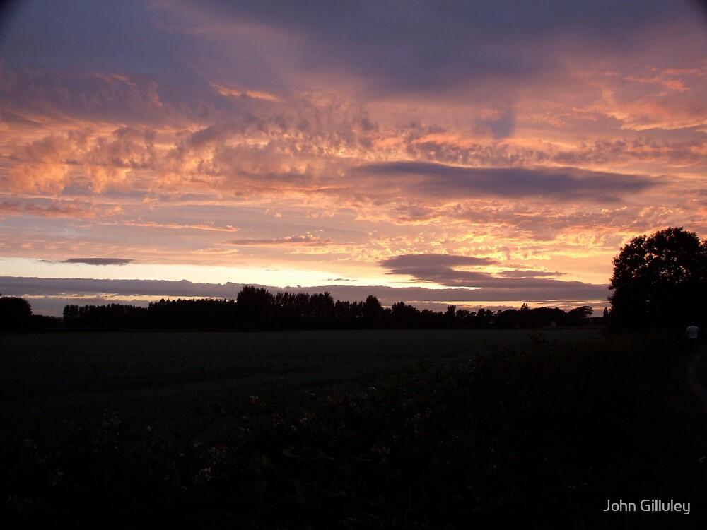Twiglight Sunset... by John Gilluley