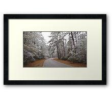 Snow Covered Forest Framed Print