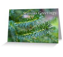 Christmas leaves - Seasons Greetings Greeting Card