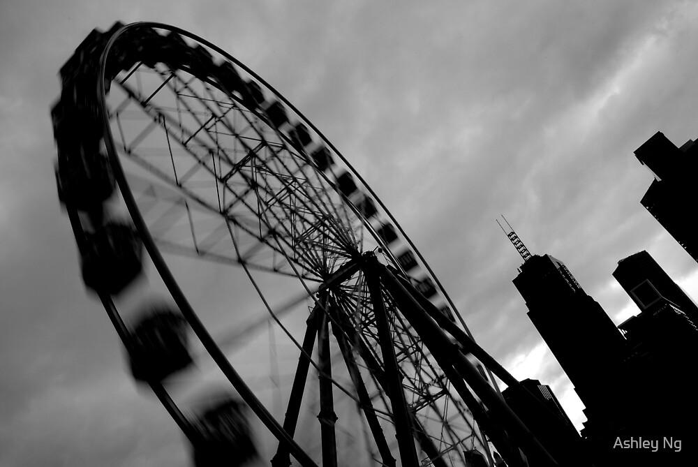 Spin City! by Ashley Ng