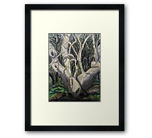 Sycamore Tree in Peppersauce Canyon, Arizona Framed Print