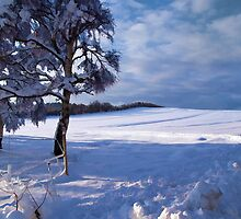Beautiful winter landscape background by Ron Zmiri
