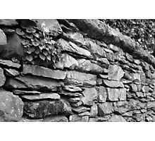 Rock walls of England Photographic Print