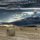 Thorner Fields by MattD
