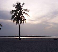 Carribean... still seascape! by Daniela Weil