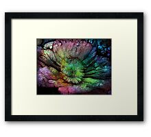 Rainbow touch rustic flower Framed Print