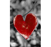 Love Heart2 (vertical) Photographic Print