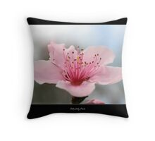 Delicately Pink Throw Pillow