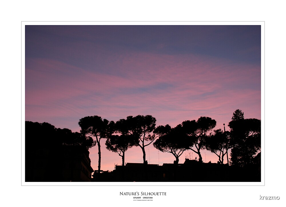 Nature's Silhouette by krezmo