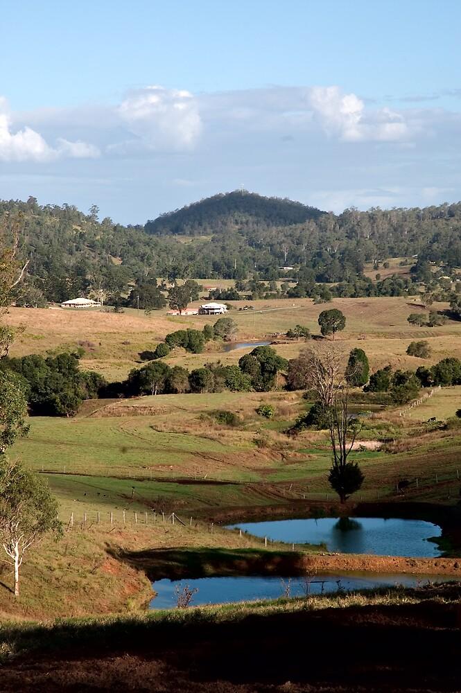 Dayboro, Queensland by J Harland