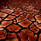 The Big Dry by Peter Daalder