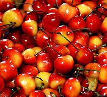 Washington Cherries by Maria A. Barnowl