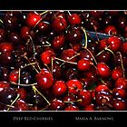 Deep Red Cherries - Cool Stuff by Maria A. Barnowl