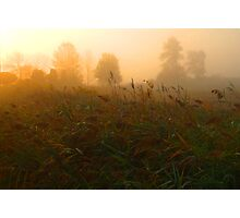 Dawn Fog Photographic Print