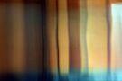 Elevate•1 by Robert Meyer