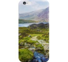 Lead Me To Freedom iPhone Case/Skin