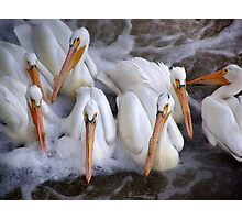 tightly knit group Photographic Print