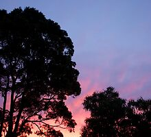 Aussie Sunset Sky by John Billing