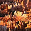 Bryce Canyon by Robyn Lakeman