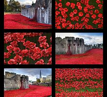 Poppies at the Tower collage by Chris Day
