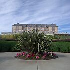 Domaine Carneros by BstillPhoto