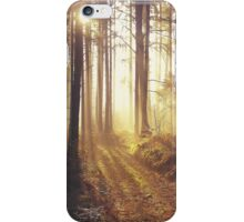 Into The Dawn iPhone Case/Skin