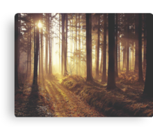 Into The Dawn Canvas Print