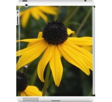 Sun Kissed Sue iPad Case/Skin