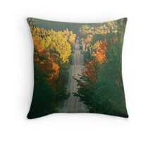 country road #2 Throw Pillow
