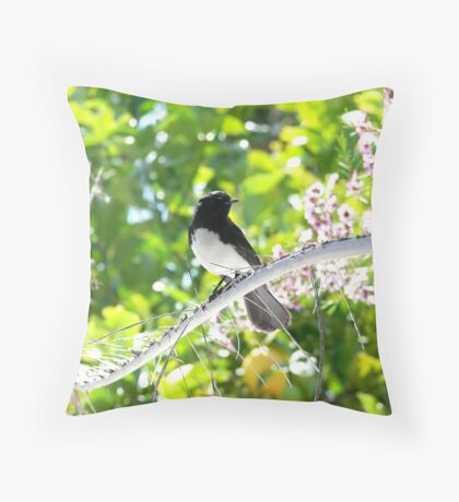 Willy  Wagtail Watching Throw Pillow
