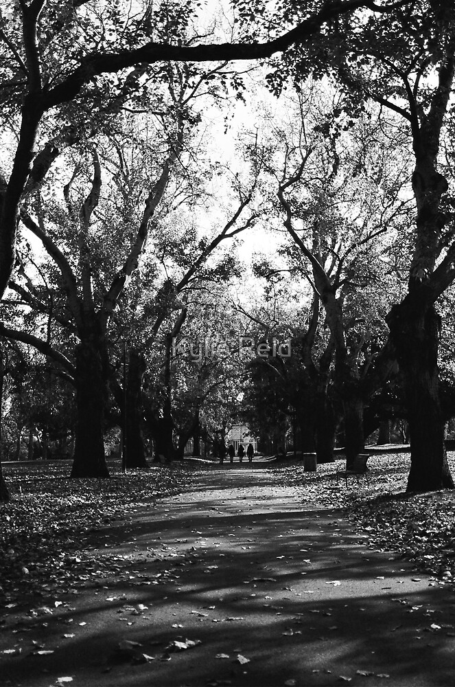 Garden Path by Kylie Reid