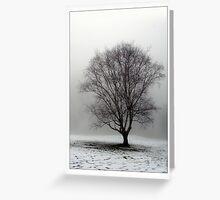 Snow Struck Greeting Card