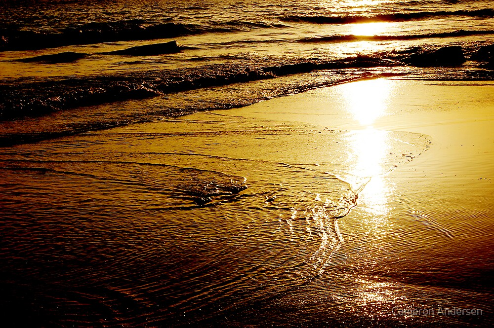 Waves of Gold. by Cameron Andersen