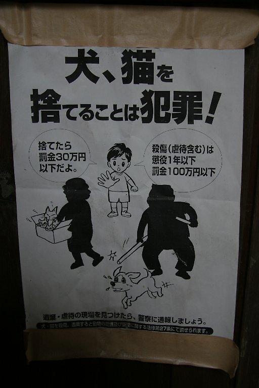 Warning against animal cruelty by Trishy