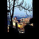 Framed Budapest by grimbomid