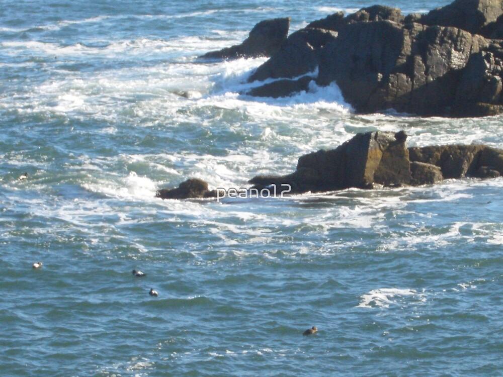 Ocean by peano12