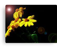 Yellow Flowers! Canvas Print