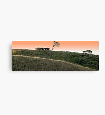 '' RURAL '' Canvas Print