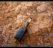 Volcanic Bottle by Georgi Bitar
