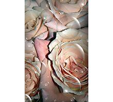 Hidden Treasures Photographic Print