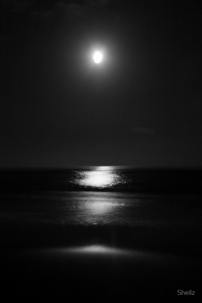 Black Night. Silver Moon by Sheilz