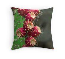 Southwestern Series Throw Pillow