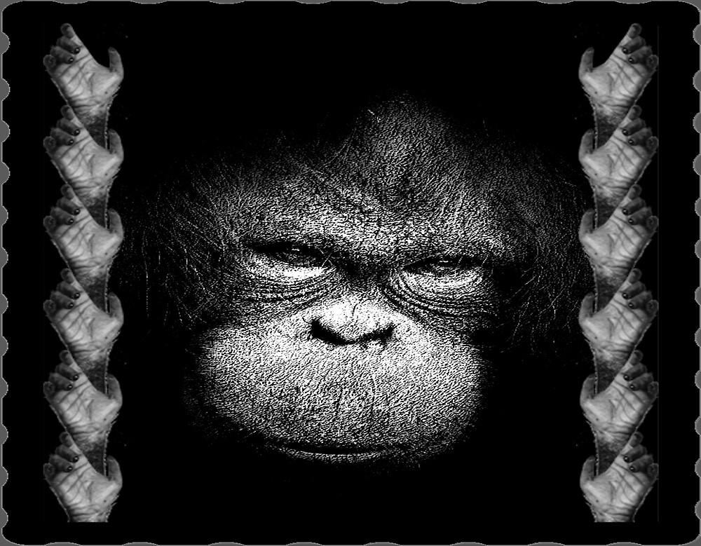 chimp by CheyenneLeslie Hurst