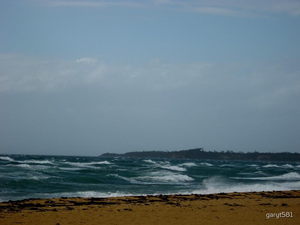 wind swept by garyt581