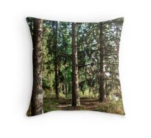Which Path to Take Throw Pillow