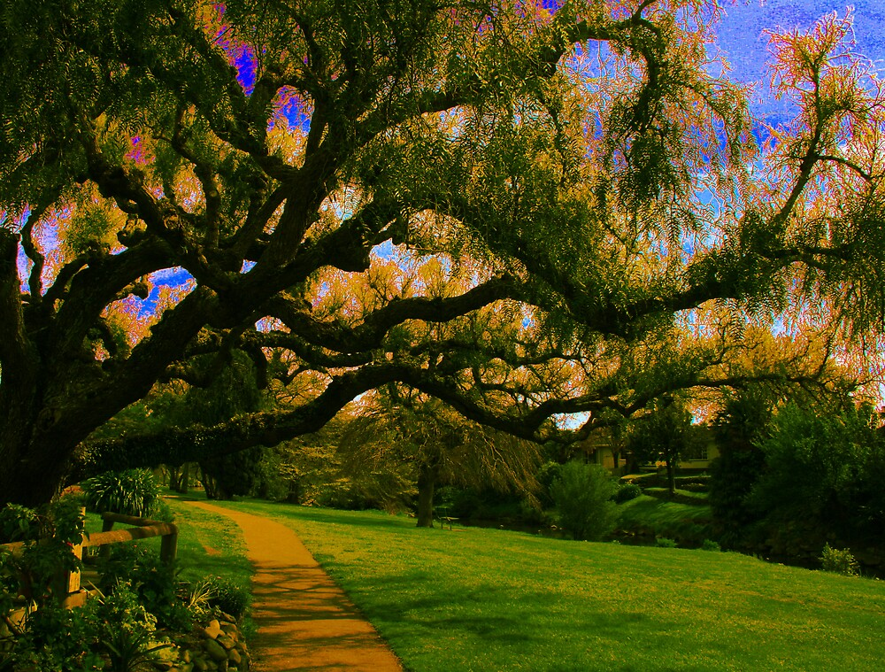 Pathway by JoTaylor